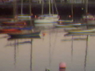 Boats in Harbor.jpg